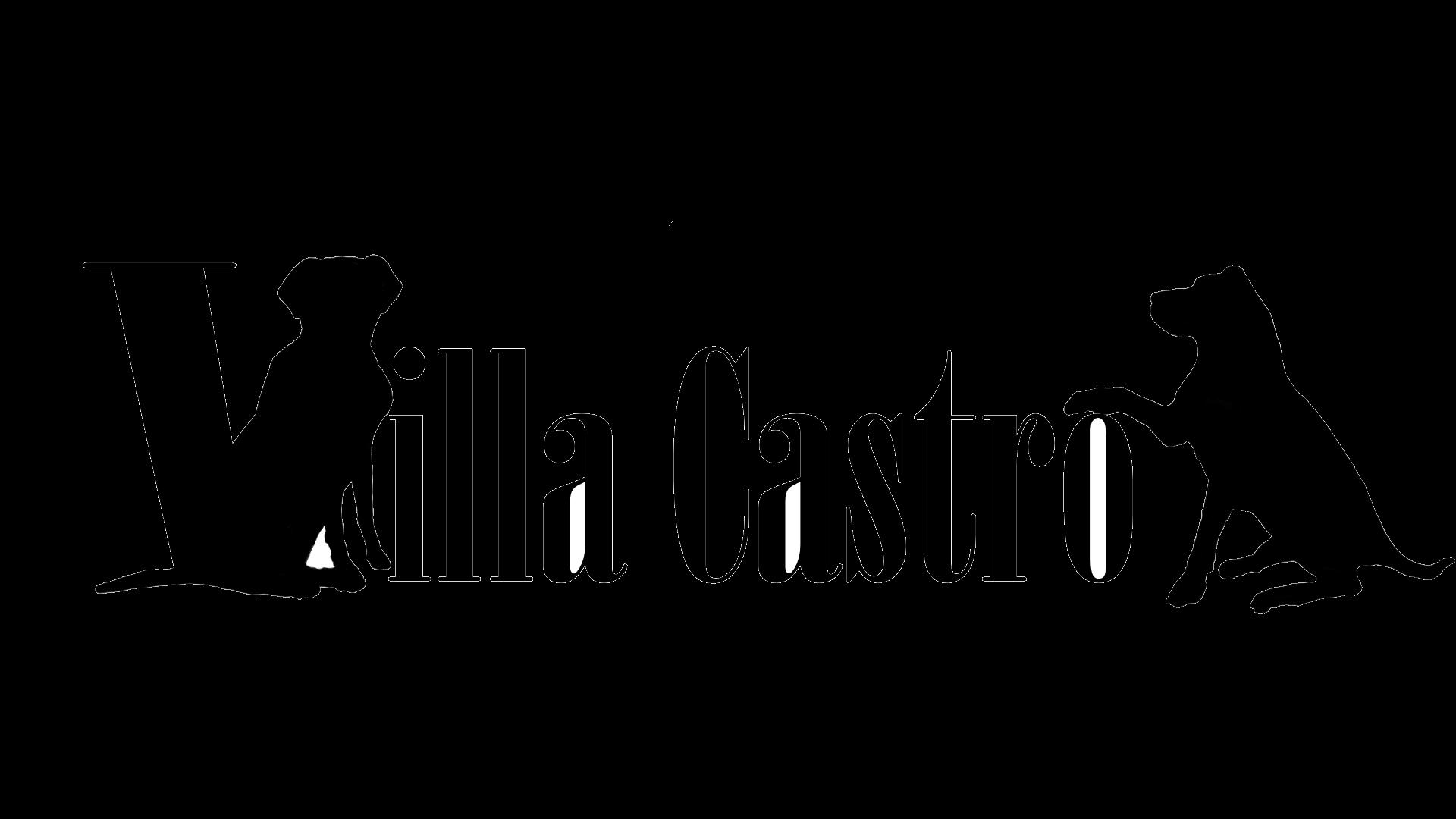 Villa Castro